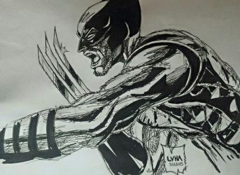 My Wolverine drawing! by VVArtist