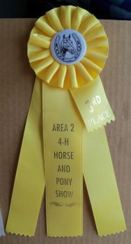 Horse Show Ribbon 3rd. Stock by Lovely-DreamCatcher