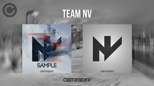Logo Design | Team NV by CertifiedFX