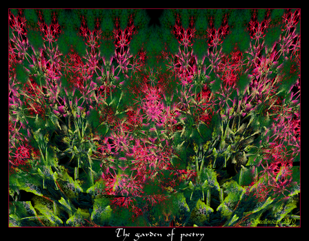 The garden of poetry by Szellorozsa
