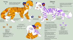 Edward and Torrey Shared Character Chart 2013 by Kainaa