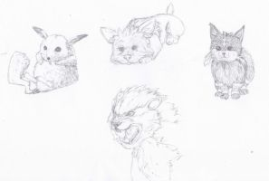 Pokemon Realism Sketches by Ken-Dolly