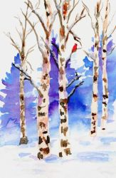 Cardinal in a Birch Stand by Jlombardi