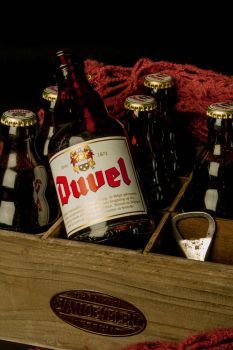 Resting Duvel by codeboy