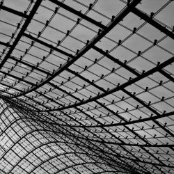 Lines by TinkerSally