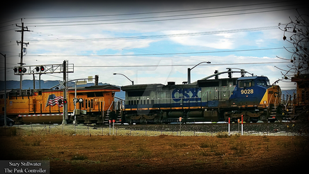Union Pacific and CSX by KitKat37