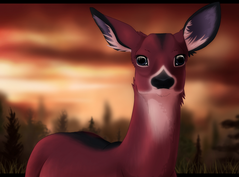 Deer by Aliuh