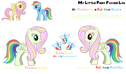 MLP Fusion Lab 01 - Colorful Breeze by DeviantMaster2014