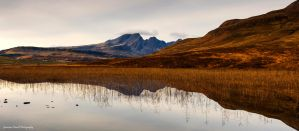 Reflected glory by LordLJCornellPhotos
