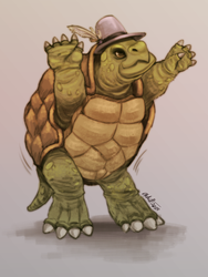 Create A Hero 1 - Male Dancer Tortle by Otakatt