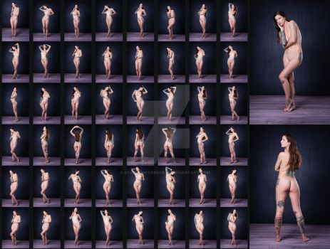 Stock: Sylvia Nude Standing Poses - 50 Images by stockphotosource