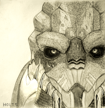 Turian by Holt5