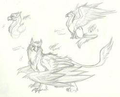 Gryphon Sketches by RoomsInTheWalls