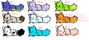 3 Point Cat Adopts by IvypoolForever