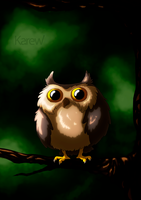 Cute owl by Karew