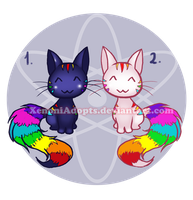 Rainbow Kitties Adoptables [ CLOSED ] by XenoniAdopts