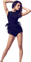 Lea Michele png 1 by VelvetHorse