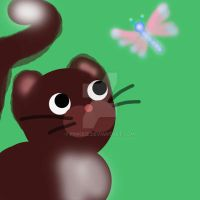 Cat and butterfly by pinkbiz