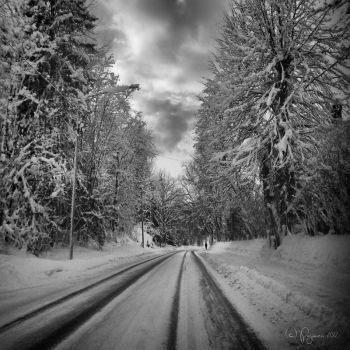 Lonely Road by Pajunen