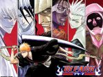 Bleach Wallpapers by Valvado