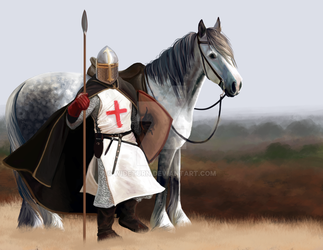 Templar and horse by wideturn