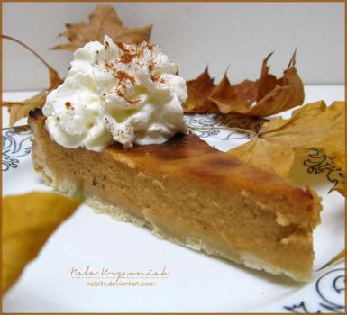 Pumpkin Pie by NelEilis