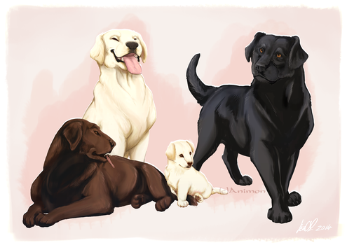 Dog Designs! ~Labradors by animon