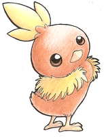 Cute Torchic by diaszoom