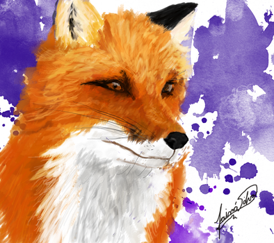 Red Fox by Taina-dOS
