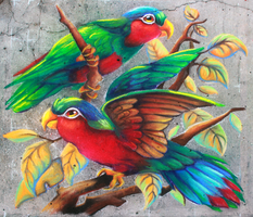 Rainbow Chalk Birds by charfade