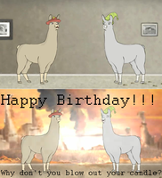 Llamas With Hats: B-Day Card 1 by HeReIaMRaMbLiNgAgAin