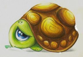 turtle by smitth