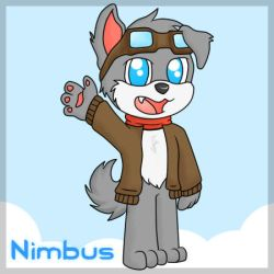 Nimbus, the Pilot Doge by Charpuppy