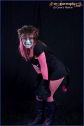 Cats by MoguCosplay