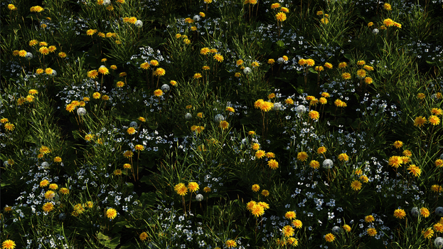 Bed of Flowers by Gannaingh32