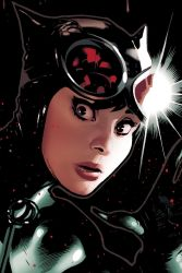 Catwoman 83 Detail by AdamHughes