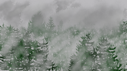 Fog coverd forest by dsnano