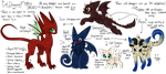 Cat Dragon Species Guidey Thing by PsychoBerries