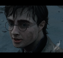 ::Harry Potter:: by TussenSessan