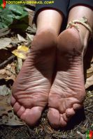 Dirt by Footografo