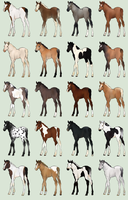 Large Foal Adoptables Batch - CLOSED by Anonymous-Shrew