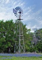 Windmill and Blue Bonnets by labba1