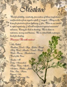 Book of Shadows: Herb Grimoire - Mistletoe by CoNiGMa