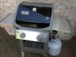 New Weber outdoor grill by dth1971