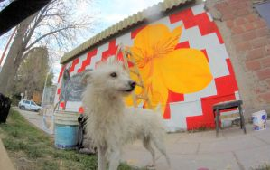 Street Art/_Dogs are always stay when i paint by Johnny-Aza