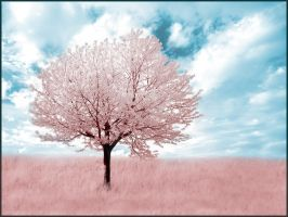 Pink Tree infrared... by MichiLauke