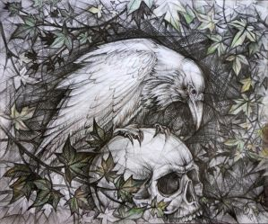 White Raven by SineLuce