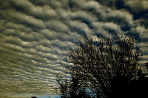 Cool Sky by lizflo