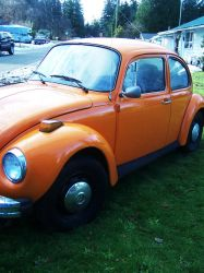 Orange Bug.2 by Promandis