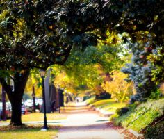 Walk With Me by LisaAnn1968